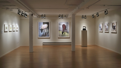 Installation Photo 5 - Back Gallery