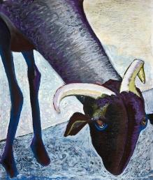 Pecore Portrait #5