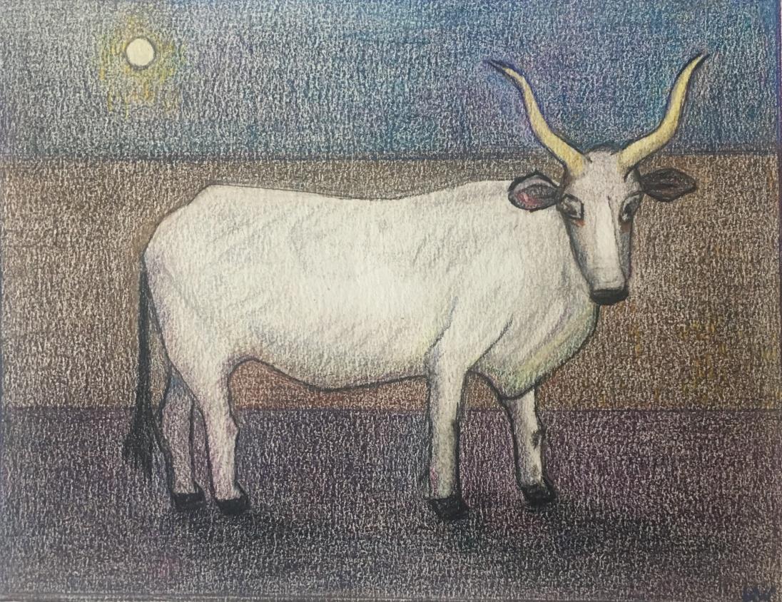 Maremma #2, Pencil on paper, 15x19cm, 6″x7 1/2″, 2021